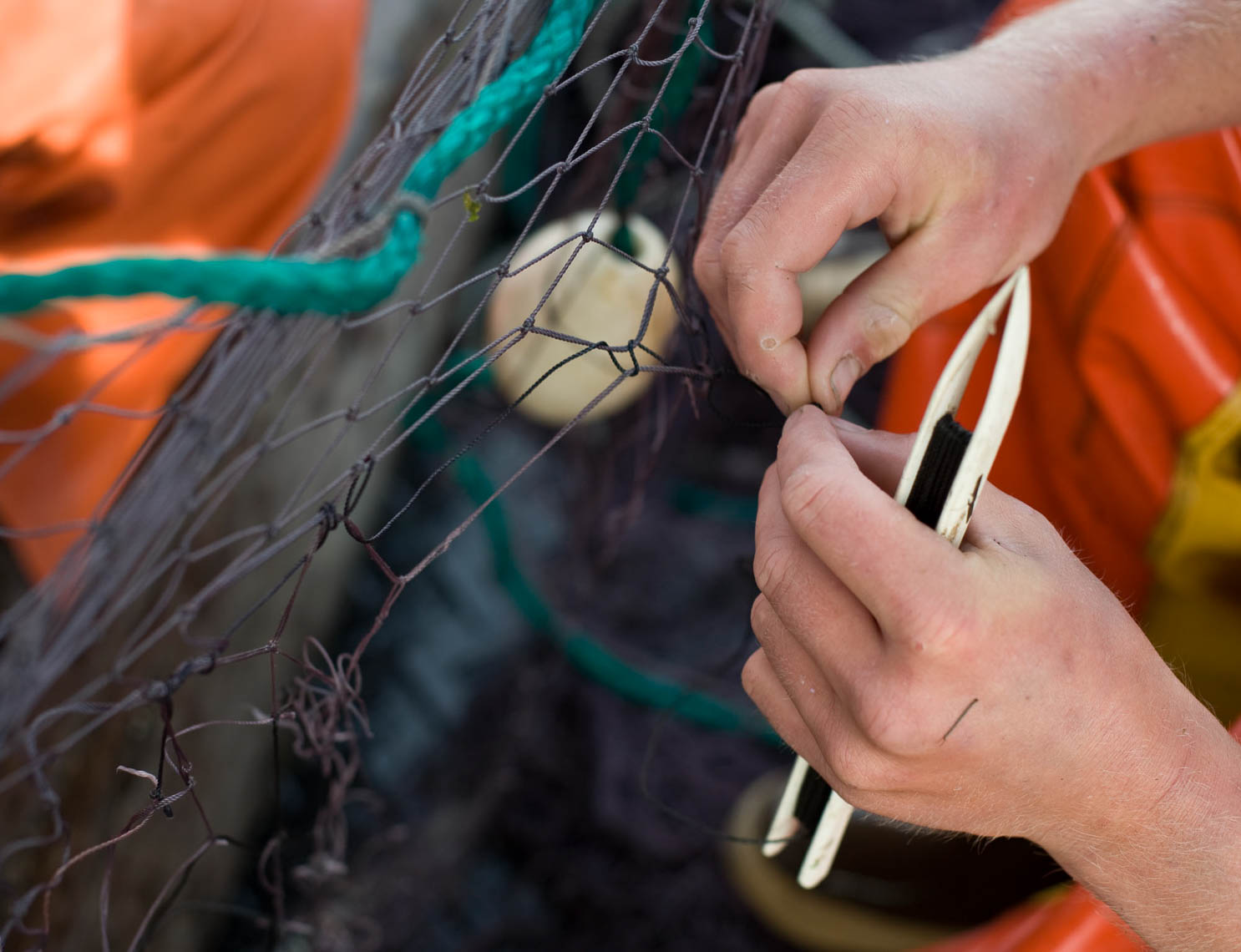 Repairing Anchovy Net