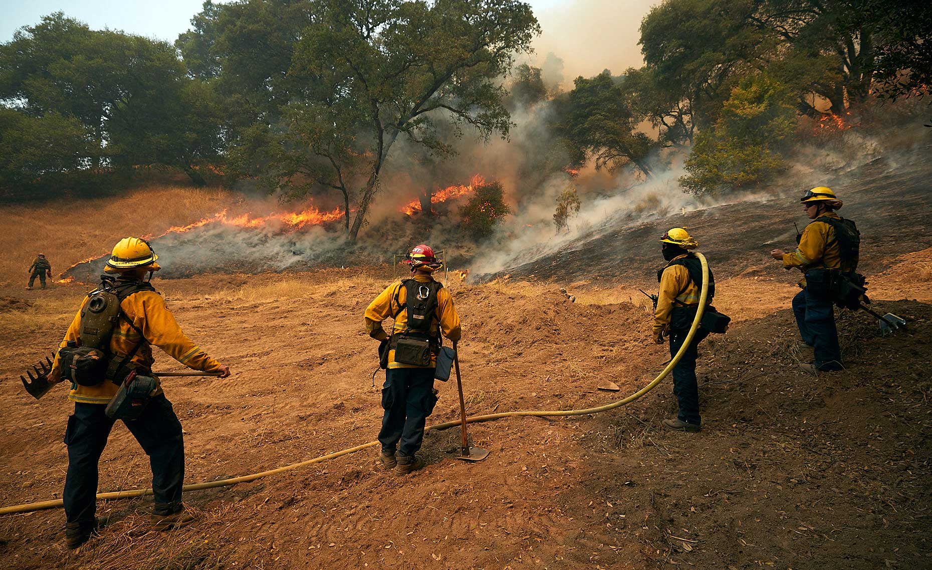 Line of Firefighters Guard One Flank of a Wildfire