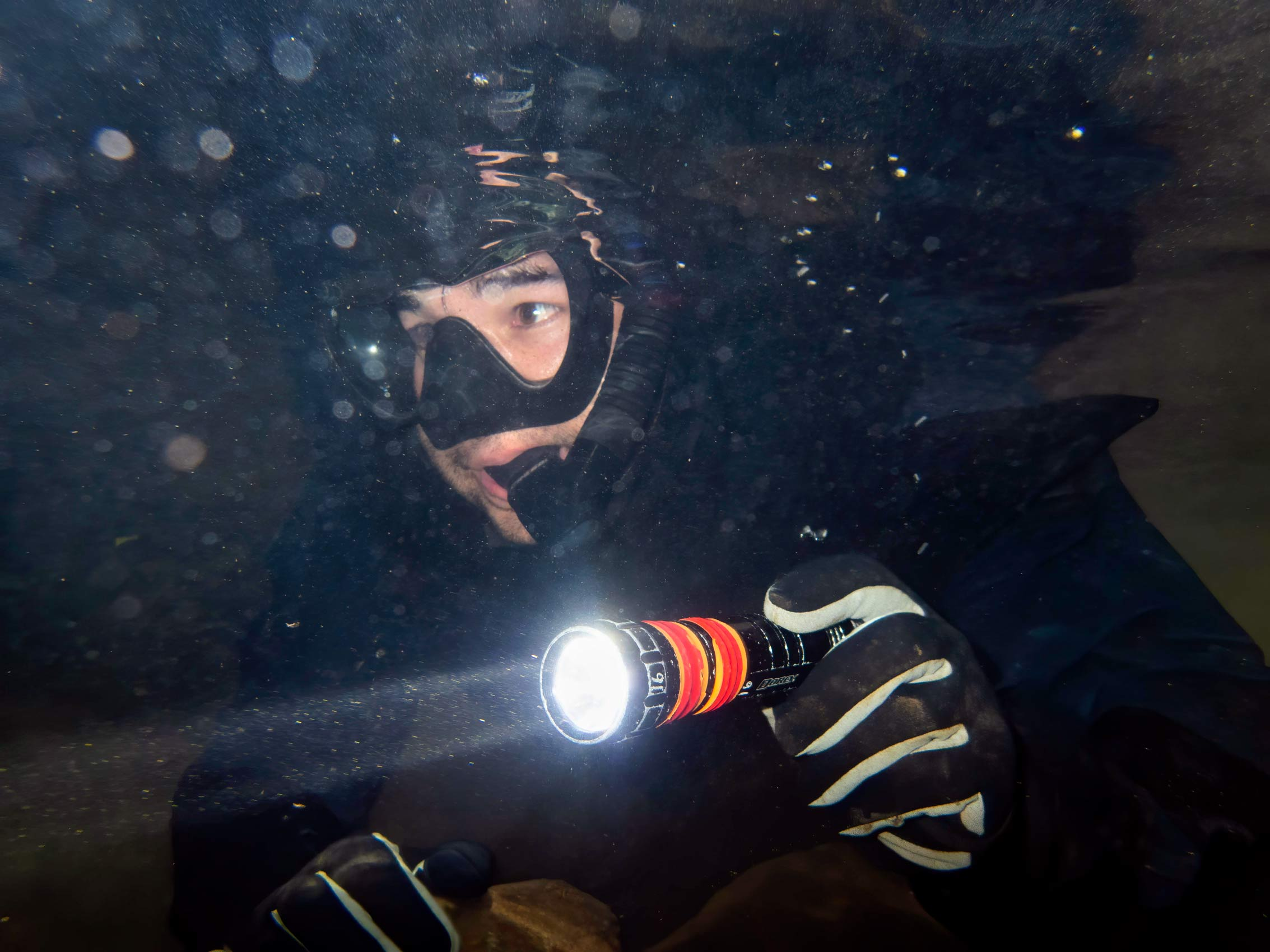 Scientist Underwater with Flashlight Monitors Fish Population