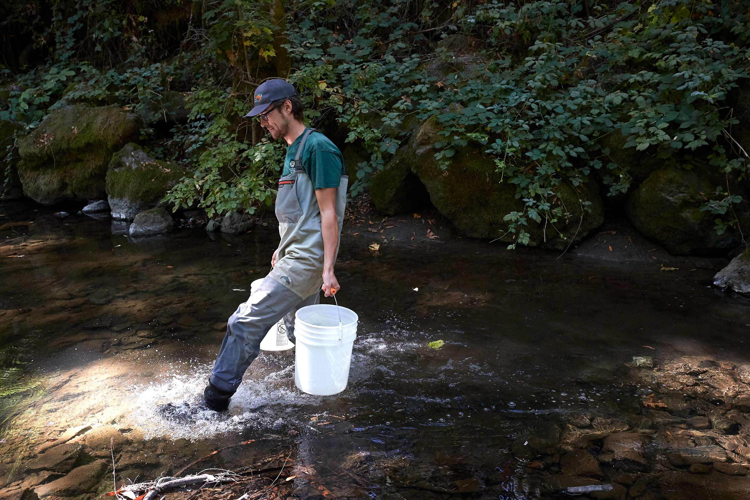 Scientist Wearing Waders Carries Buckets of Water