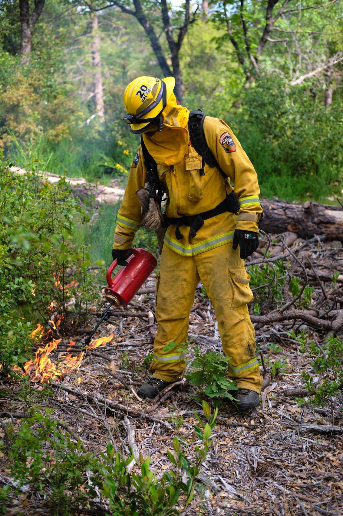 Firefighter Using Drip Torch