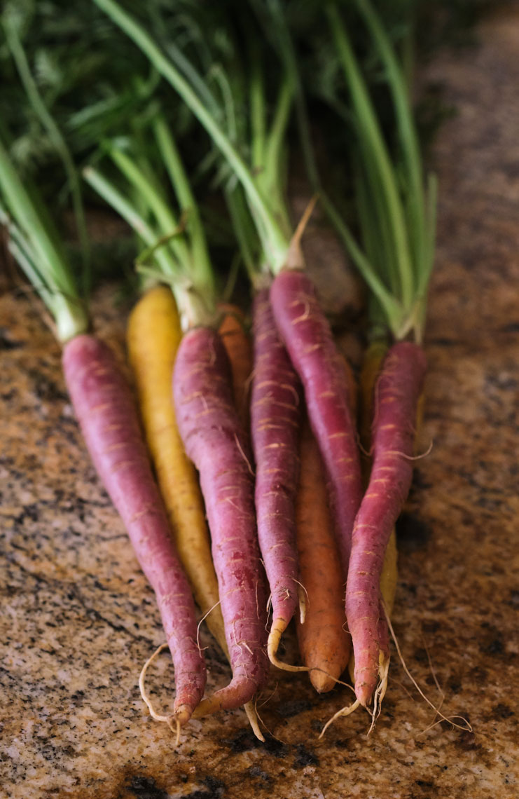Fresh Carrots on a Kitchen Counter
