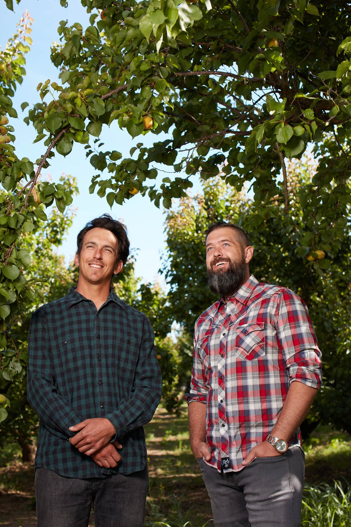Brad Squires and Matt Brunner Prosper Orchard