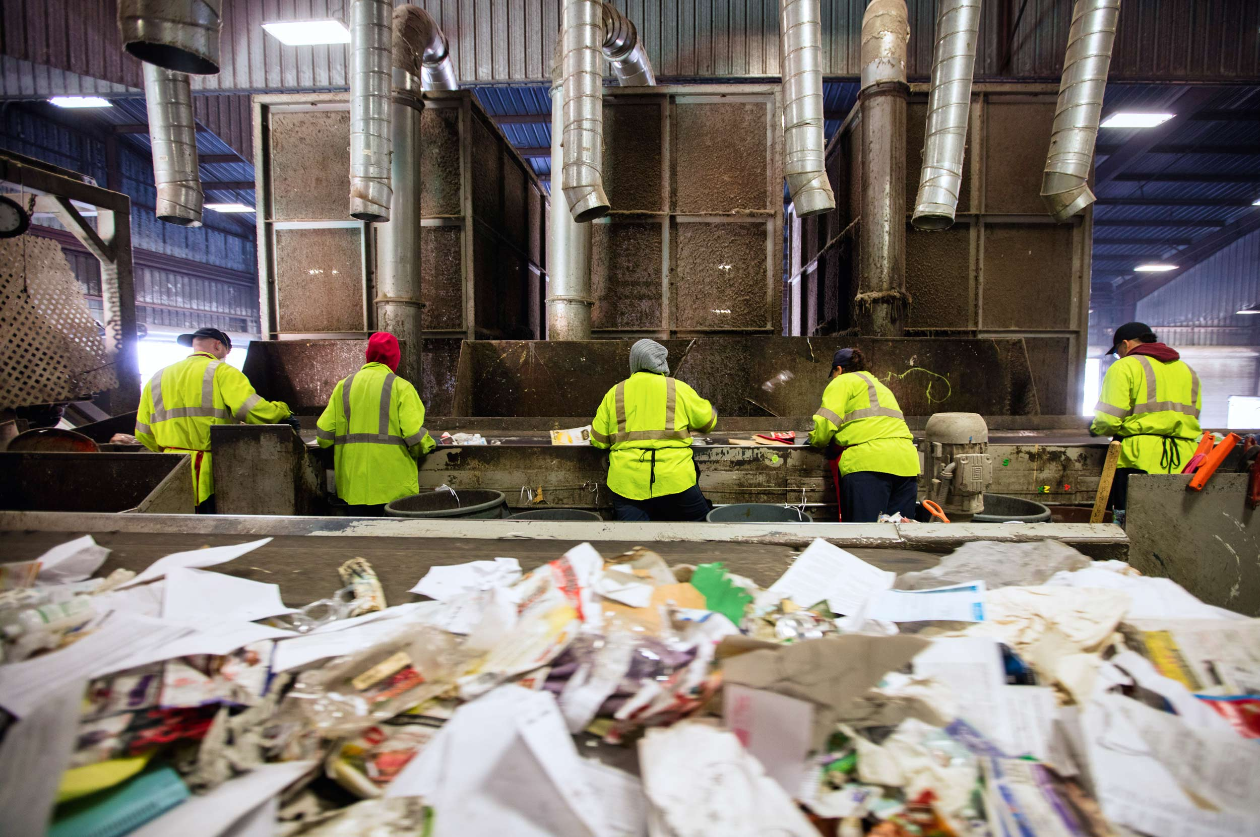 A Group of Workers Sort Recycling
