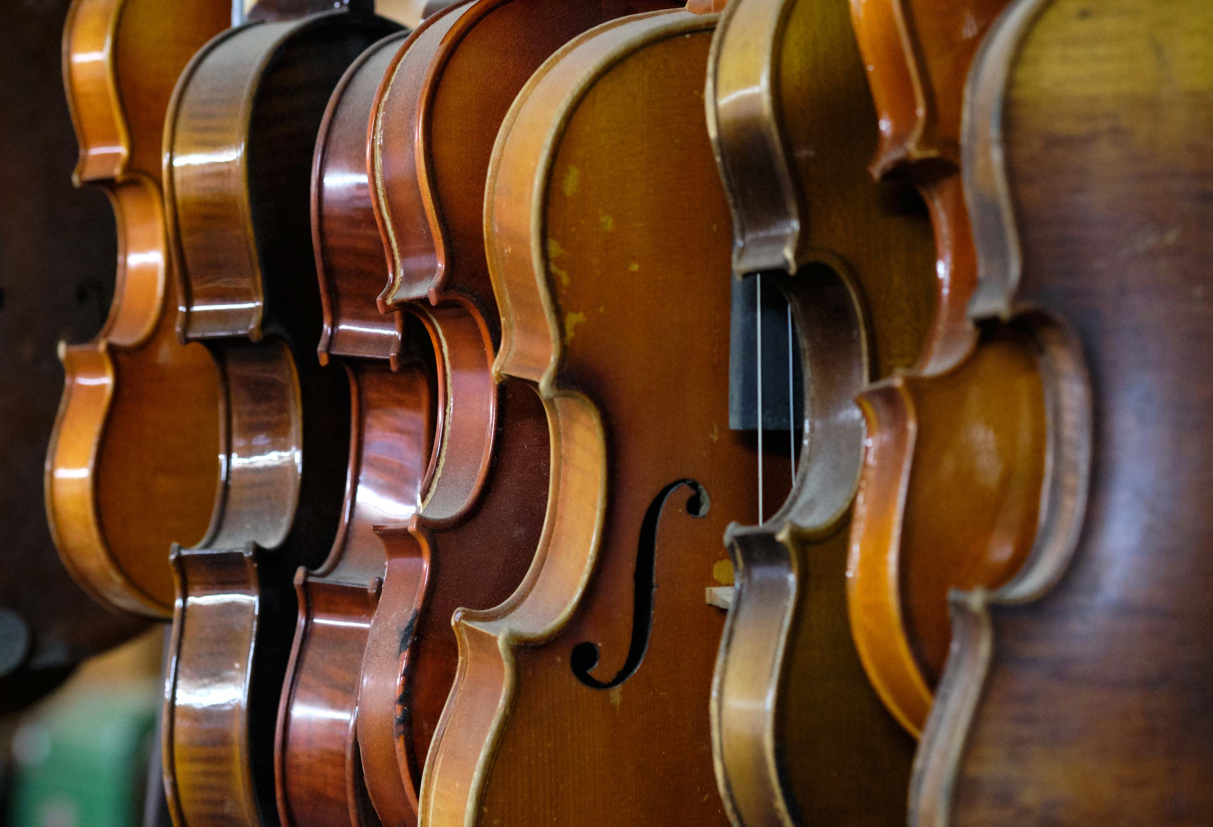 Stringed Instruments Waiting to be Fixed