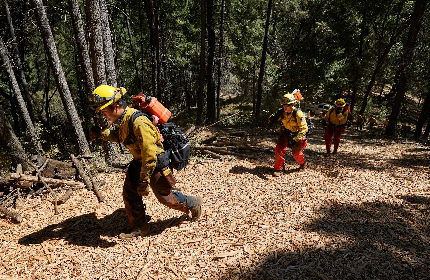 Firefighters HIke Through the Forest